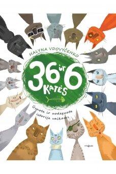 36 ir 6 katės