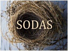 """""""Lazario moterų"""" autorė Marina Stepnova sugrįžta su nauju romanu """"Sodas"""""""