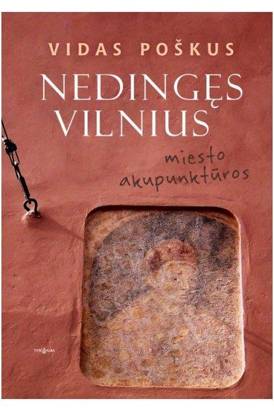 Nedingęs Vilnius