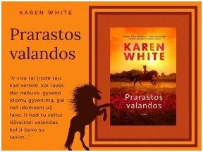 """Knygos apžvalga (Perskaitytų knygų dienoraštis). Karen White """"Prarastos valandos"""""""