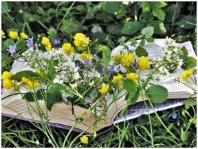 """Leidyklos """"Tyto alba"""" vasaros pabaigos naujienos"""